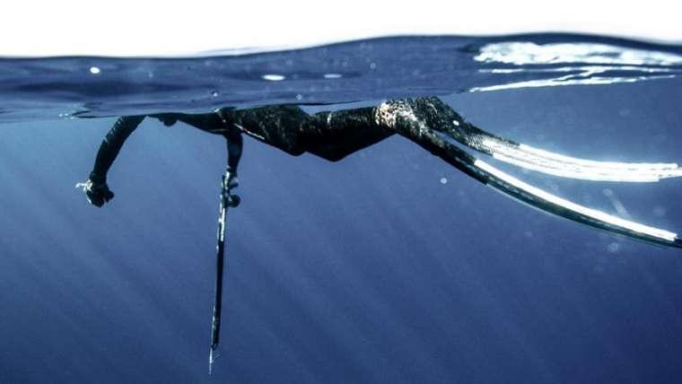 Chasse sous-marine pour les débutants ou les confirmés